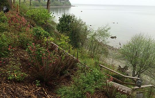 Coastal Bluffs, Slopes and Erosion Control