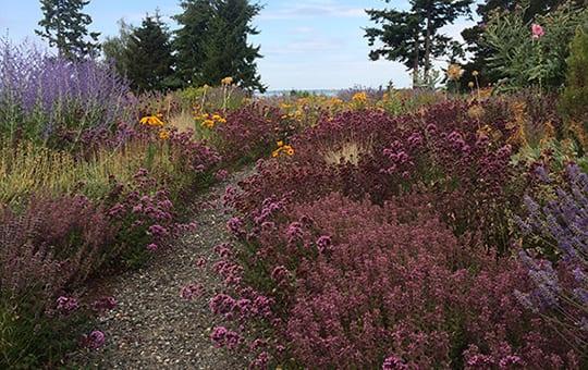 Landscape Horticulture, Habitat Gardens